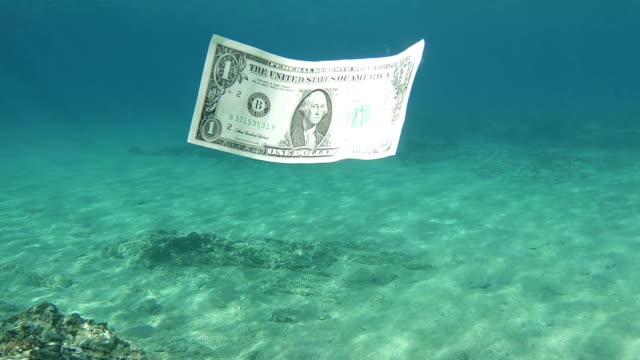 one dollar bill floating in sea water - погружённый стоковые видео и кадры b-roll
