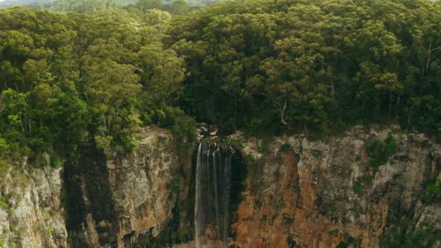 one of nature's masterpieces - дикая местность стоковые видео и кадры b-roll