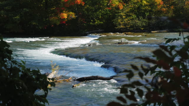 One of the inflows of the Niagara River before the waterfall. Clear autumn day video