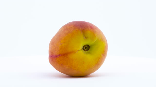 One peach fruit is rotating on the turntable isolated on the white background. Close up. One peach fruit is rotating on the turntable isolated on the white background. Close up. peach stock videos & royalty-free footage
