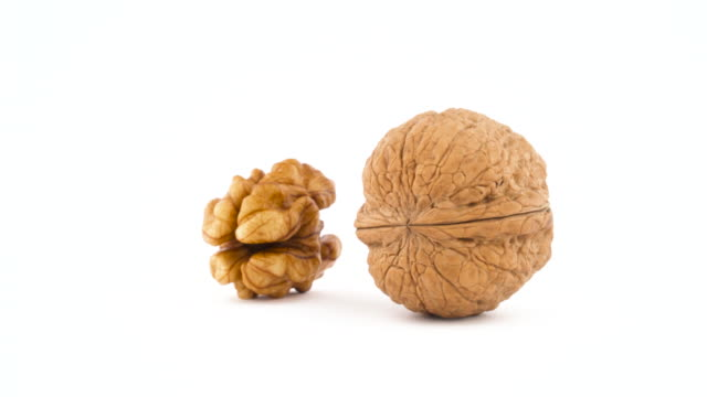 One raw walnut without the shell and one hazelnut in the shell. Rotating on the turntable isolated on the white background. Close up. Macro.
