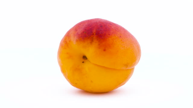one whole apricot fruit. rotating on the turntable. isolated on the white background. close up. macro. - albicocca video stock e b–roll