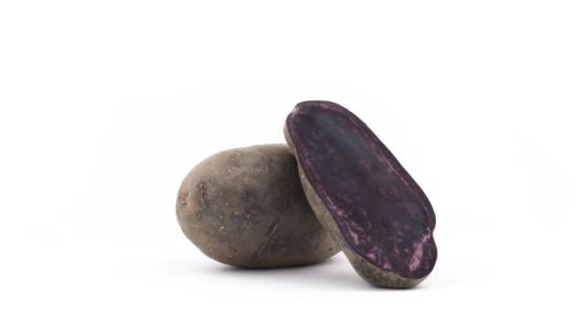 eine ganze vitelotte-kartoffeln, eine hälfte des violetten kartoffel. langsam rotierende auf der drehscheibe auf dem weißen hintergrund isoliert. hautnah. makro. - knollig stock-videos und b-roll-filmmaterial