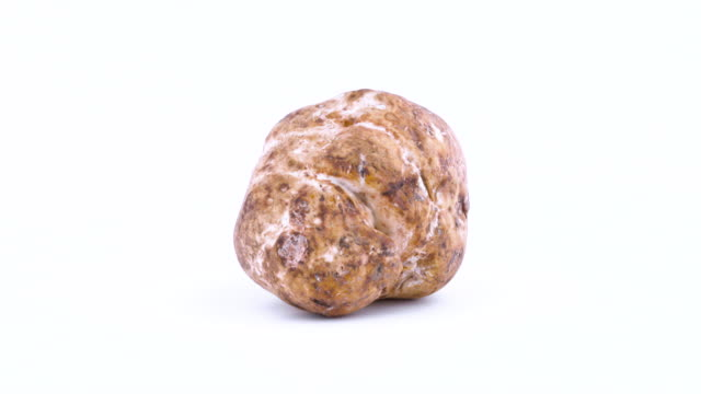 one whole white truffle mushroom rotating on the on the turntable isolated on the white background. closeup. macro. - alta moda italy video stock e b–roll