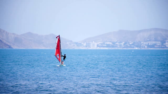 One windsurfing sail on the sea against the backdrop of the coastline video