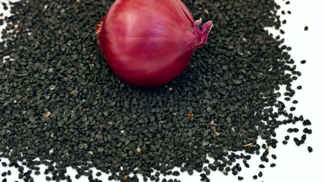 onion seed, onion seed for organic cultivation, tiny black onion seeds, - alliacee video stock e b–roll