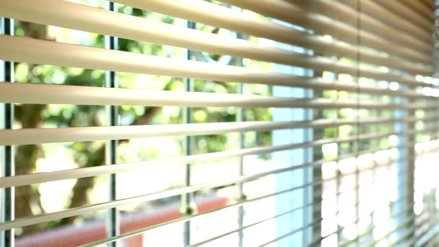 open and close window blinds - penombra video stock e b–roll