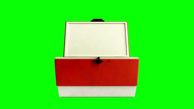 frigorifero da spiaggia aperto rendering 3d rosso più fresco su uno schermo verde - torace umano video stock e b–roll