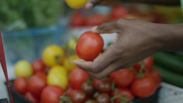 Open Market - Tomatoes for Sale Open Market - Tomatoes for Sale plum stock videos & royalty-free footage