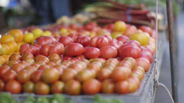 Open Market - Tomatoes for Sale Open Market - Tomatoes for Sale market retail space stock videos & royalty-free footage