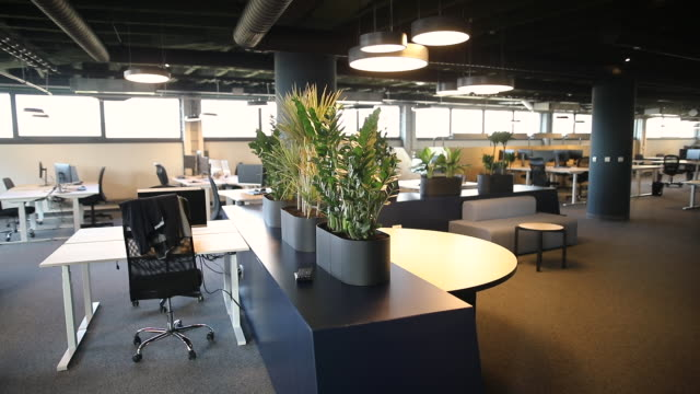 Open plan office with work stations and computers. Modern office interior with desks and chairs, spacious work environment video
