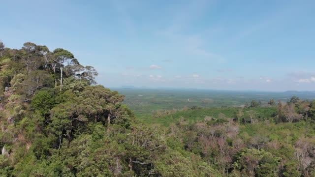 Open world nature scenics 360 dedree view video