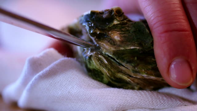 Opening Fresh Oysters video