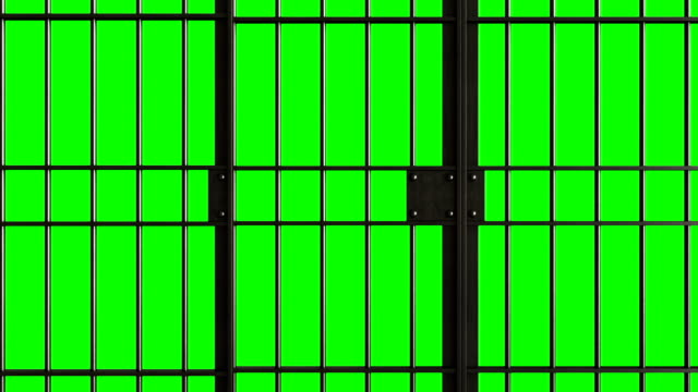 aprire la porta della prigione - prigione video stock e b–roll