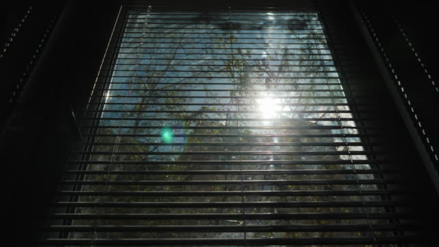 Opening of horizontal blinds on the window. Through them the sun shines video