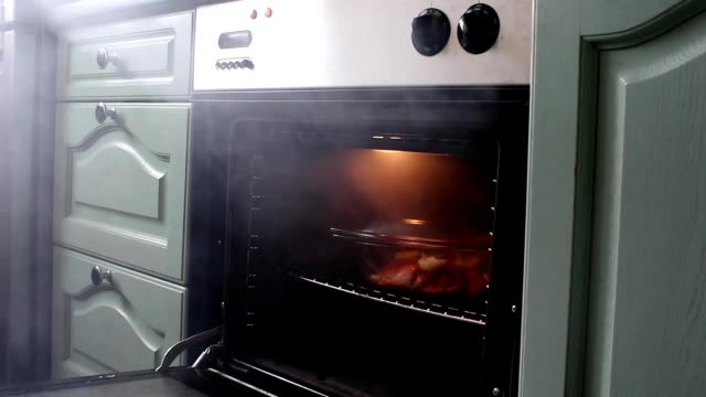 vídeos de stock e filmes b-roll de opening oven releasing smoke from burnt meal - burned cooking