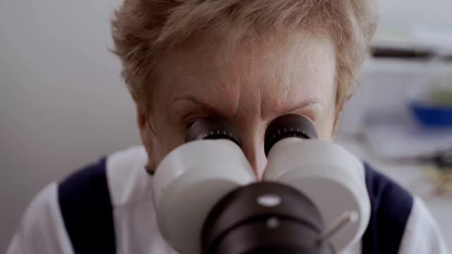 vidéos et rushes de coup d'oeil ophtalmologiste dans l'équipement optique moderne - réfracteur