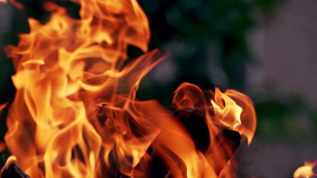 Bидео Orange flame on smoldered logs on blurred background.