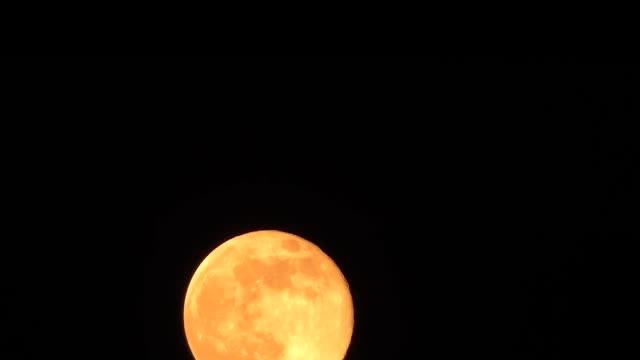 Orange full moon timelapse video