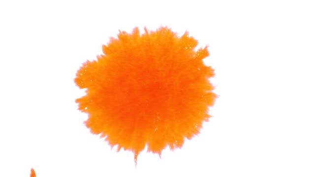 오랑주 잉크에도 흩뿌린 - 주황색 스톡 비디오 및 b-롤 화면