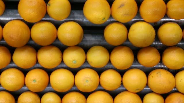 orange processing - livsmedelstillverkningsfabrik bildbanksvideor och videomaterial från bakom kulisserna