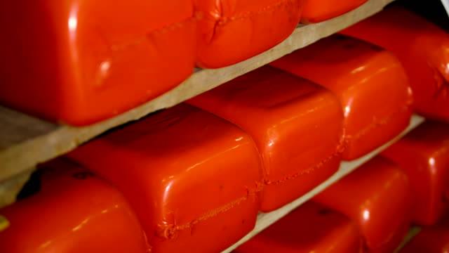Orange red cheese loaves are stored in rows. video