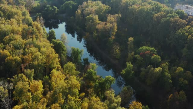 orbital aerial drone video around small long lake with autumn trees - молдавия стоковые видео и кадры b-roll