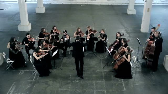 Orchestra. Musician playing violin on the symphony hall video