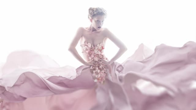 orchid dress - seta video stock e b–roll