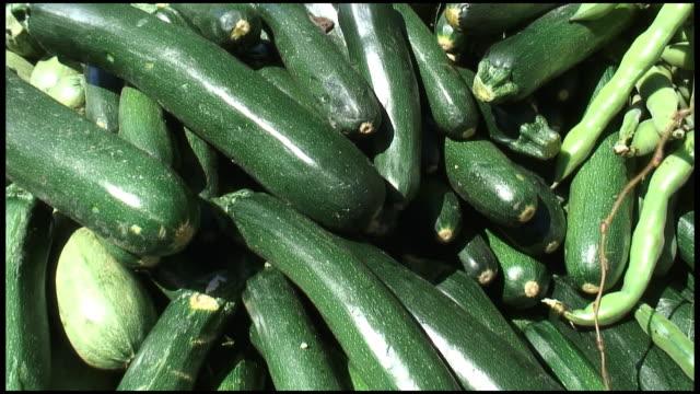 HD: Organic Courgette, Zucchini, Italian or Marrow Squash video