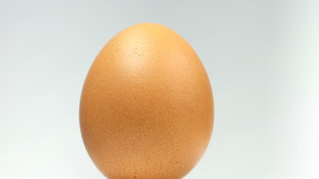 Organic Egg - Close up video