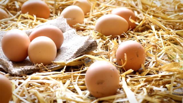 stockvideo's en b-roll-footage met biologische eieren op rustieke hout en stro - ei