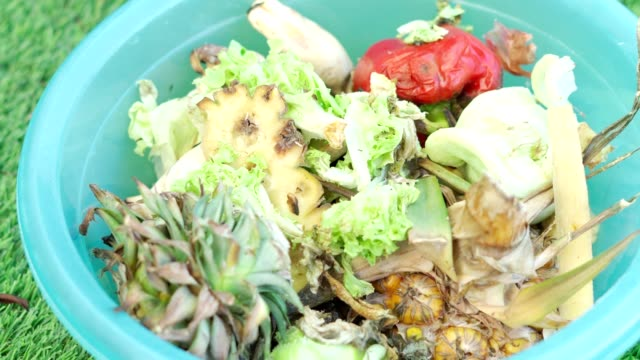 Organic food biodegradable waste