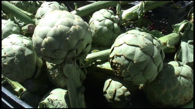 (HD1080i) Organic Globe Artichoke Stems video