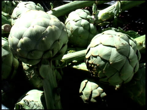 Organic Globe Artichoke Stems video