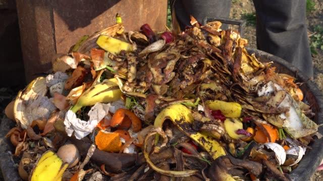 organiskt köks avfall. mat avfall kompostering bin - food waste bildbanksvideor och videomaterial från bakom kulisserna