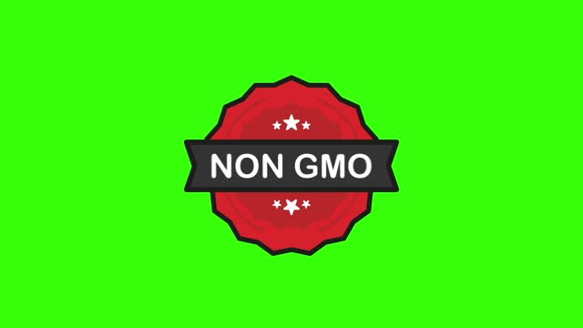 NON GMO organic nature badge red Stamp icon in flat style on white background. Motion graphic.