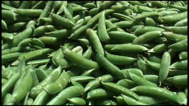 (HD1080i) Organic Peas video