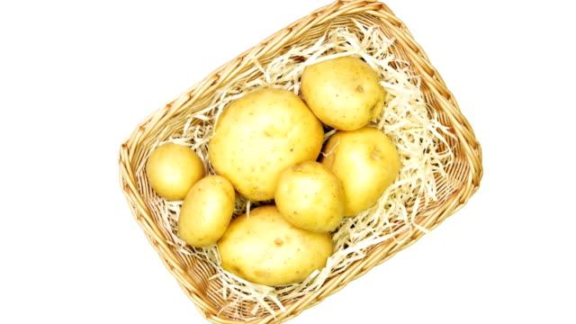 bio-kartoffeln für eine gesunde ernährung. - knollig stock-videos und b-roll-filmmaterial