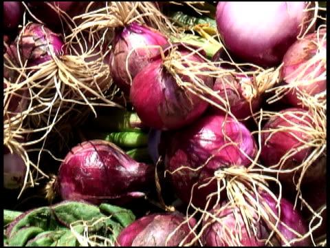 organiche cipolle rosse e scalogno - alliacee video stock e b–roll