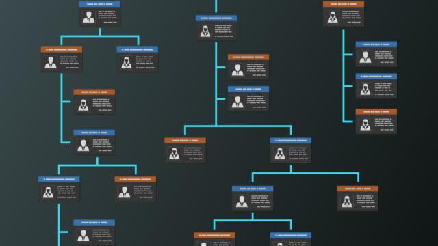 organization chart concept - badge video stock e b–roll