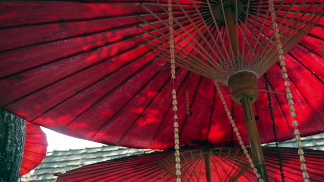 Oriental red umbrella with green leaves and sun shine. Travel to Asia abstract background video
