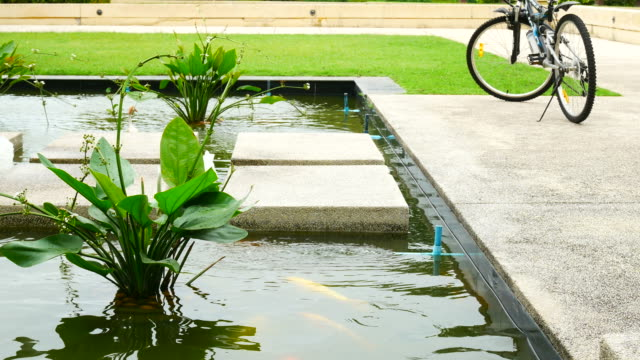 Lagoa do jardim ornamental relaxar exterior zen Sobreira - vídeo
