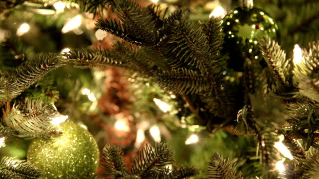 ornaments hanging along tree timelapse video