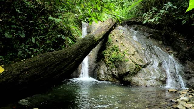 Osa peninsula, Costa Rica, waterfall