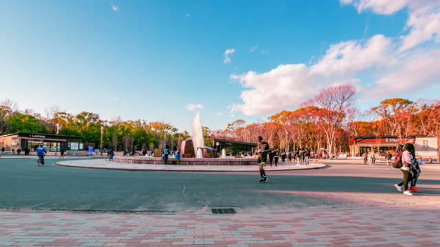 Osaka park in the winter day, Japan, Time lapse