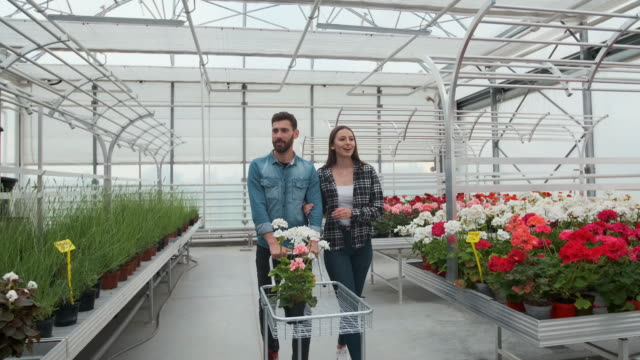 Нoung couple Buying Flowers in a Sunlit Garden Shop. 4K. Coupe shopping for decorative plants on a sunny floristic greenhouse market. Home and Garden concept.