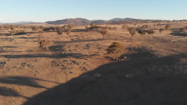 Outback Australia aerial drone footage over dry bush grazing farm country video