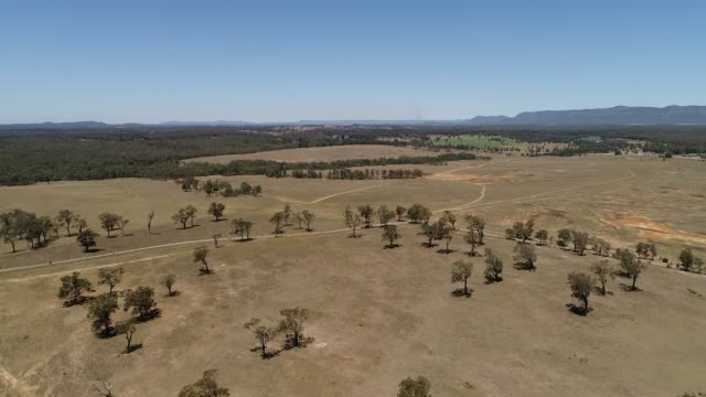 HV Outback dirt road Arid australian outback in Hunter valley on shores of Hunter river during drought with brown soil and scarce gum trees. paddock stock videos & royalty-free footage