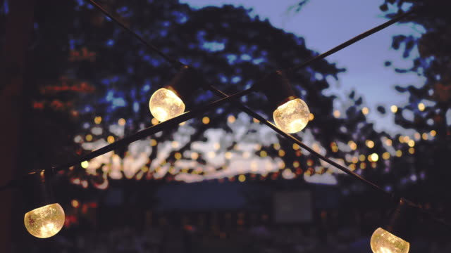 vídeos y material grabado en eventos de stock de luces de fiesta al aire libre - fiesta en el jardín
